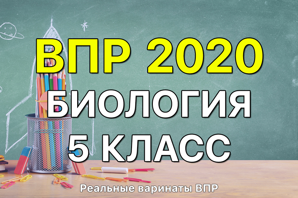 Реальные задания и ответы ВПР 2020 по биологии 5 класс